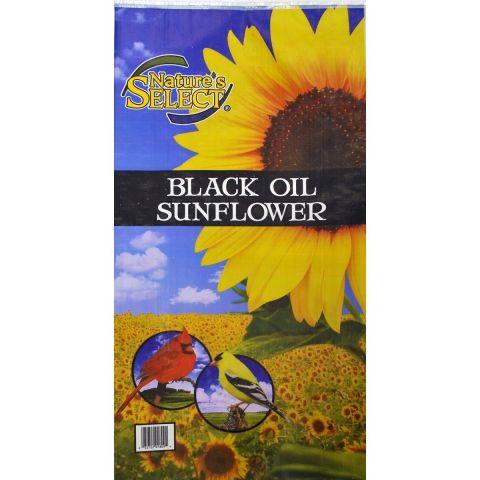 Nature's Select Sunflowers Wild Bird Feed