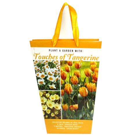 Touches of Tangerine Elegance Bag