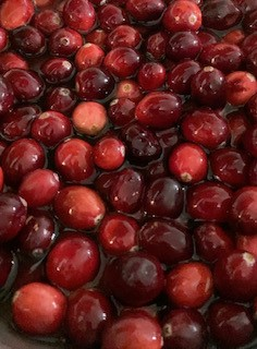 Start a Homegrown Cranberry Garden Holiday Tradition