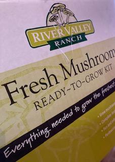 Instructions to grow Agaricus bisporus Mushroom Kit
