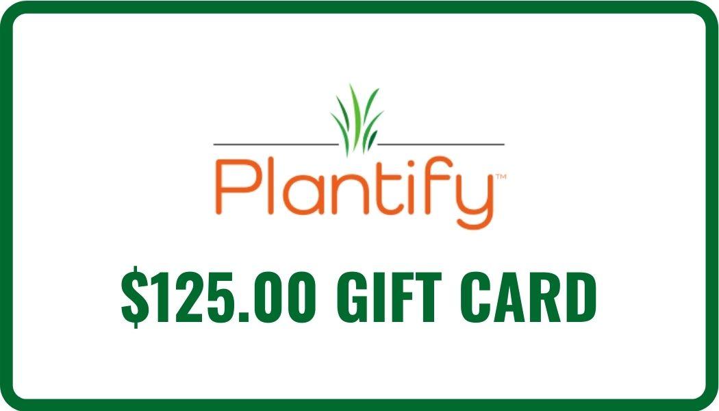 $125 eGift Card Image