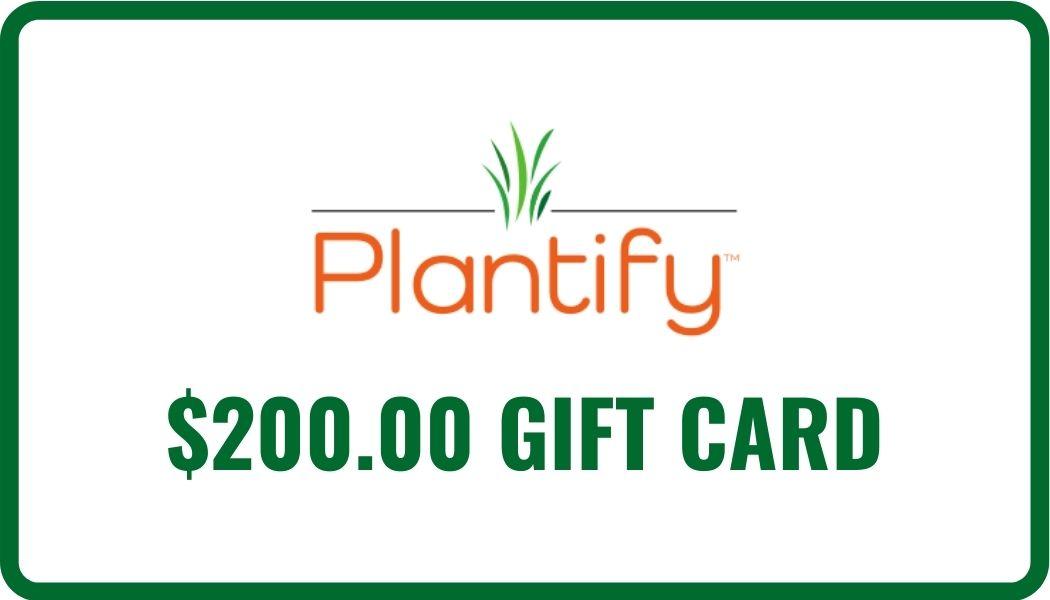 $200 eGift Card Image