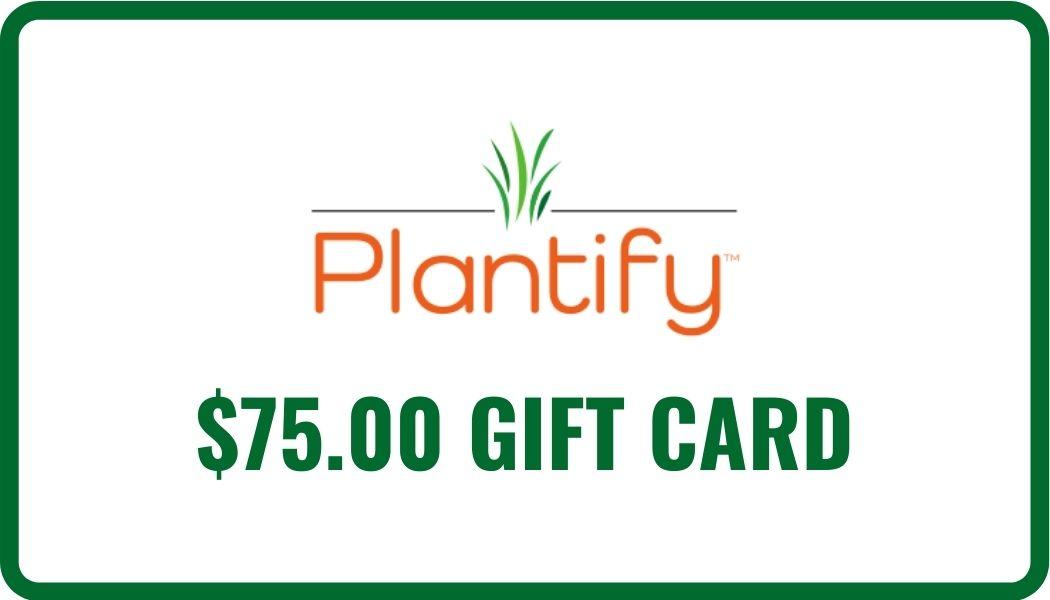 $75 eGift Card Image
